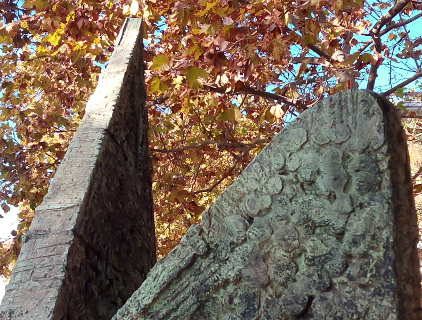 Upper part of Evocació Marinera against autumn leaves